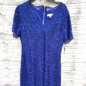 Calvin Klein Lace Dress New With Tags